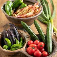 高知の新鮮な野菜をたっぷり使ったお料理は女性におすすめです。