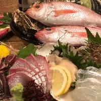 新鮮な魚介類をどうぞ!
