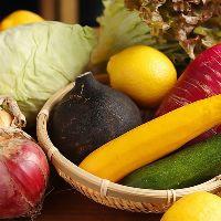 長野松代から野菜を直送◇