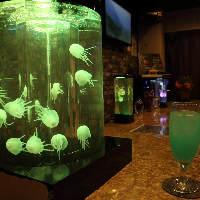 【幻想的空間】 クラゲがたゆたう水槽の七変化を楽しめる空間