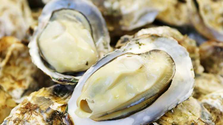 「松島の牡蠣を心ゆくまで堪能!「焼がきハウス」で牡蠣食べ放題