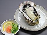 舞鶴産岩かき
