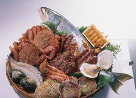 魚菜家 旬蔵 栄店