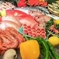 新鮮な魚介や食材を使った宴会コースが人気!直送鮮魚の刺身も。