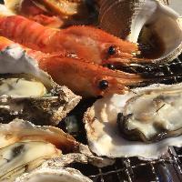 函館漁港から目利きのセリ人が仕入れてくる新鮮海鮮の数々!
