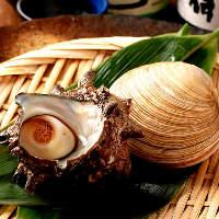 サザエや大浅利、アッパ貝の浜焼きは大人気。(1個300円から)