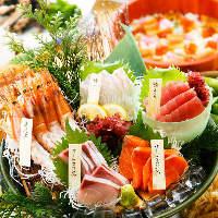 毎日仕入れる新鮮な魚介の味を堪能ください。