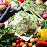 地元愛知県を中心に、国産にこだわった新鮮野菜を使用しています