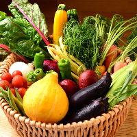 朝露滴る三重県産の旬野菜は全て無農薬!その数は年間250種以上