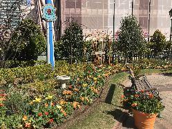 四季折々のお花が楽しめるヨーロピアンガーデンも魅力