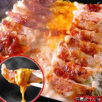 『餃子フォンデュ』新感覚の美味しさです!