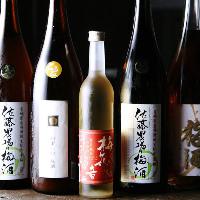 +500円でプレミアム飲み放題開始☆日本酒全種飲めます☆
