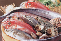 兄弟会社が魚問屋!! お得に新鮮魚介をお愉しあれ♪