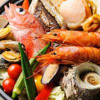 鮮度と味を追求し、お造りだけでなく焼き物や煮物も新鮮なものを