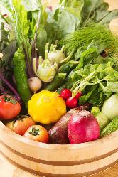 朝露滴る♪滋味深い北海道産の無農薬、無肥料野菜が毎朝届きます