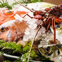 美し国の神髄!「食の宝物庫」伊勢湾より毎朝新鮮な魚介が届く。