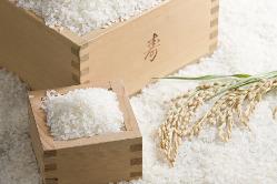 お米は愛知産米「あいちのかおり」を使用しています