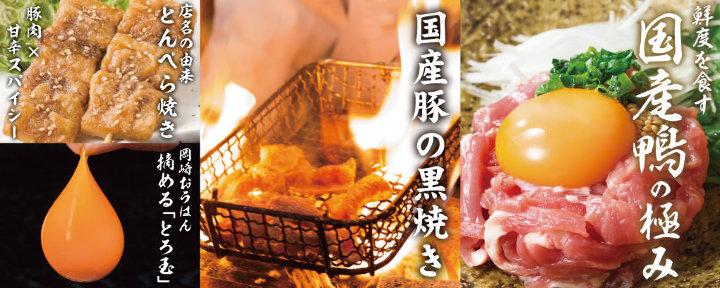 居酒屋 鴨と豚 とんぺら屋 新豊田駅前店 image