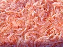 自慢の魚介豚骨スープには富山湾の白えびを使用しております