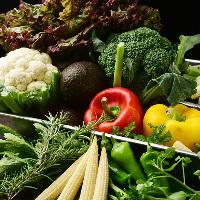 パーティーに華を添える世界のクラフトビールと豪快な肉料理!