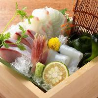 日比野市場から仕入れる鮮魚のお刺身。目でも愉しめる華やかさ