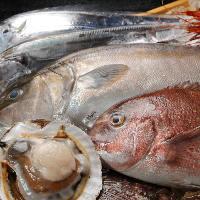 静岡が育んだ旬食材!素材の味を活かした料理を提供しております