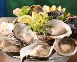 食べ比べも魅力!その季節で最良の産地より仕入れる新鮮生牡蠣!