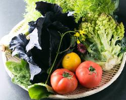 朝露滴る♪鈴鹿市にある契約農家様から新鮮な野菜が毎朝届きます