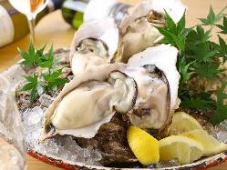 超濃厚クリーミーで栄養満点の生牡蠣!
