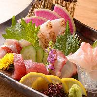三重県尾鷲から直送の鮮魚のお刺身は日替わりでご提供!