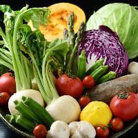 地元愛知県の朝露滴る新鮮な旬野菜。彩りサラダや串揚げをご用意