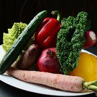 地元愛知県の朝露滴る新鮮な旬野菜!彩りサラダや焼き野菜盛りで