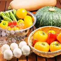 契約農家直送の新鮮野菜・卵をご提供