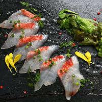 その日のおいしい鮮魚をカルパッチョで。