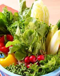 沢山使うからこそ国産野菜にとことんこだわります。