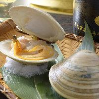 市場から直送される新鮮な海鮮類の浜焼きも充実のラインナップ