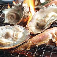 新鮮な魚介を、目や鼻でもお楽しみください!