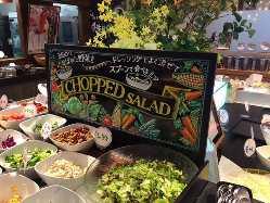 お野菜ガッツリ「チョップドサラダ」