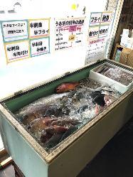 【鮮魚コーナー】