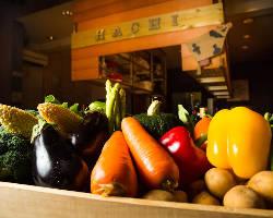 HACHIは素材にこだわり、旬の厳選食材を使って調理します!