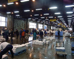 【直接買い付ける】 漁港や市場へ出向き直接買い付けます!