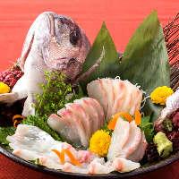 鯛の姿造り、ご宴会のオプションでご用意しております。