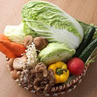 産地直送の新鮮野菜を使用!たくさん食べてヘルシーに◎