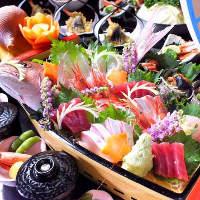 朝どれ旬魚盛合せにてお召し上がりください