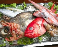 近海の新鮮な魚介類をふんだんに使用!