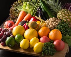 [契約農家直送] 旬の野菜を農家から直送で仕入れています