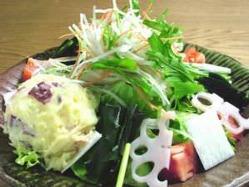 【加賀野菜のどっさりサラダ】おいしい加賀の菜☆常連客に人気♪