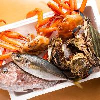 【海の幸】 佐渡産の新鮮な魚介をじっくりとご堪能ください