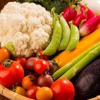 こだわりの地野菜の旨味を存分にお楽しみください♪