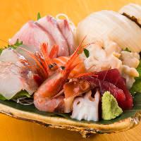 【新鮮さが命】 仕入れたばかりの鮮魚を贅沢に盛り合わせで